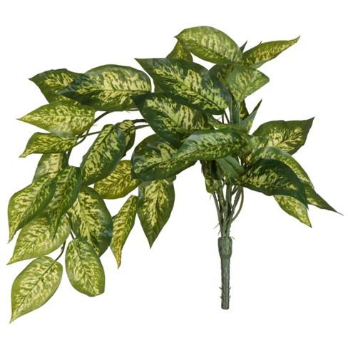 "Vickerman 24"" Artificial Green Dieffenbachia Bush Vine. - image 1 of 4"