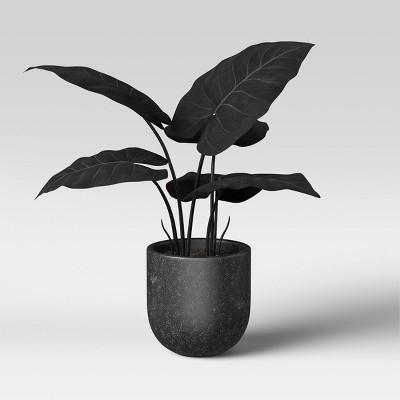 """15"""" x 18"""" Artificial Black Velvet Alocasia Plant Arrangement in Ceramic Pot - Threshold™"""