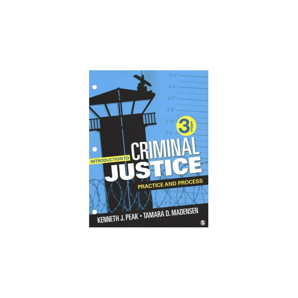 Introduction to Criminal Justice : Practice and Process - (Paperback)