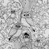 Queen Hooting Owls Hidden Pictures Sheet Set - Highlights - image 4 of 4
