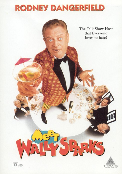 Meet Wally Sparks (DVD) - image 1 of 1