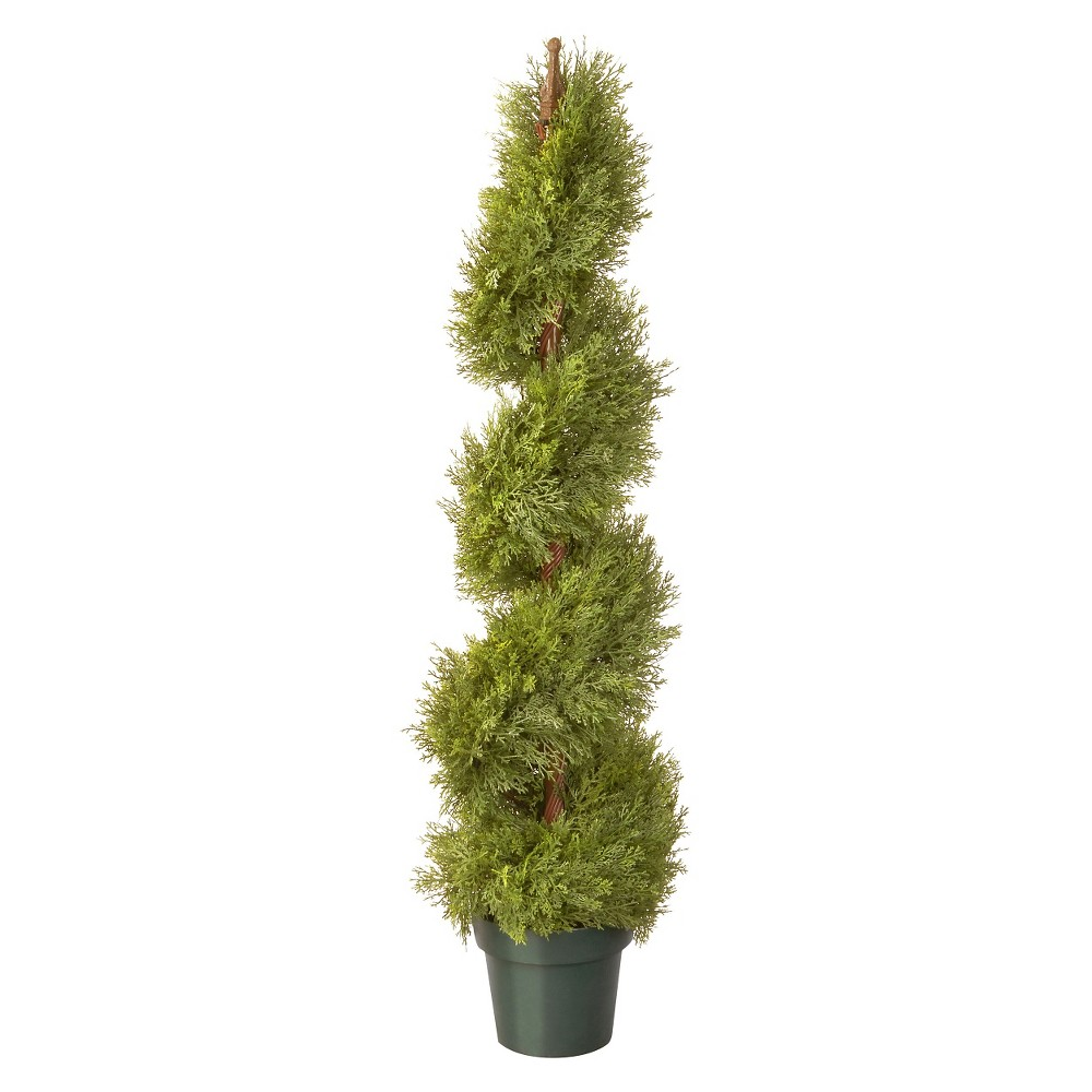 Image of Arborvitae with Pot - Green (48)
