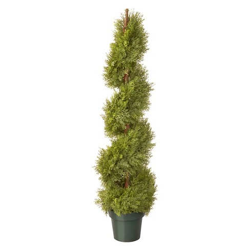 "Arborvitae with Pot - Green (48"") - image 1 of 1"