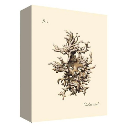 """Sea Coral I Decorative Canvas Wall Art 11""""x14"""" - PTM Images - image 1 of 1"""