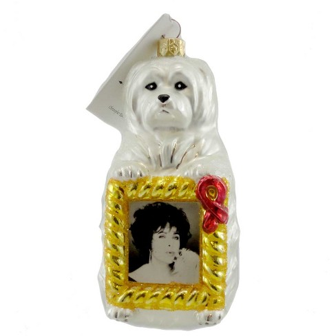 Christopher Radko Sugar Holiday Ornament Charity Aids - image 1 of 2