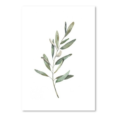 Americanflat Olive Branch by Cami Monet Poster