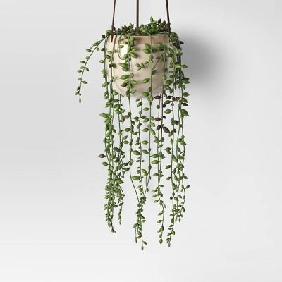 Hanging Wall Plant - Threshold™