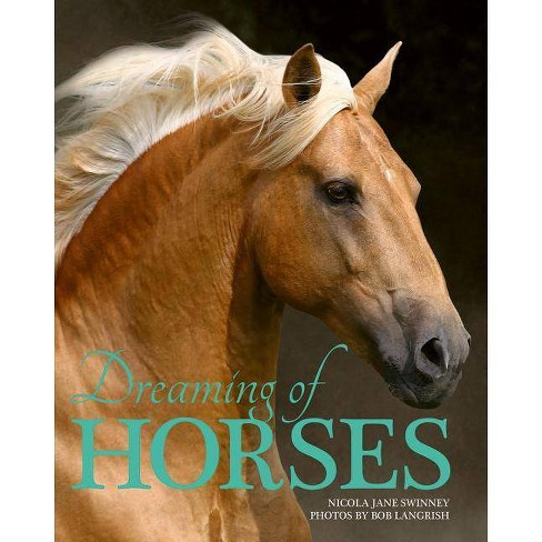 Dreaming of Horses - by  Nicola Swinney (Paperback) - image 1 of 1