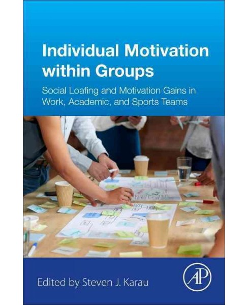 Individual Motivation Within Groups : Performance in Work, Academic, and Sports Teams (Paperback) - image 1 of 1