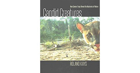 Candid Creatures : How Camera Traps Reveal the Mysteries of Nature (Hardcover) (Roland Kays) - image 1 of 1