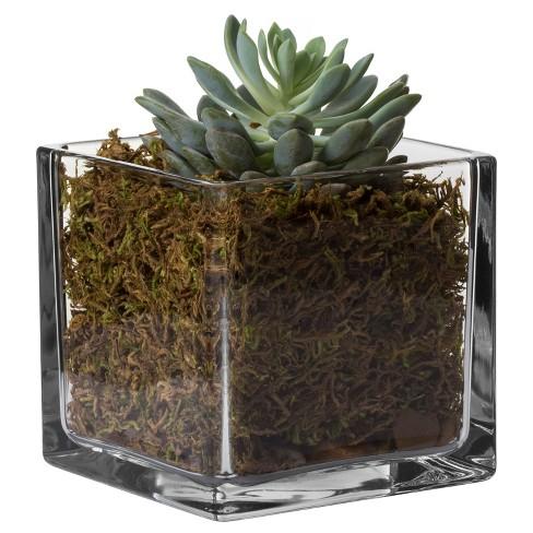 Square Glass Vase 6 Libbey Target