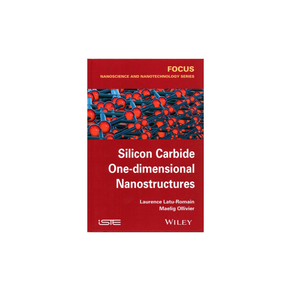 Silicon Carbide One-dimensional Nanostru ( Focus: Nanoscience and Nanotechnology) (Hardcover)