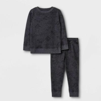 Toddler Boys' 2pc Dino Print Fleece Crew Neck T-Shirt and Jogger Pants Set - Cat & Jack™ Gray