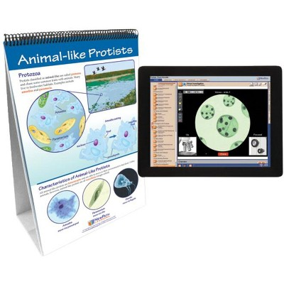 NewPath Learning Protists: Pond Microlife Flip Chart and Online Multimedia Lesson