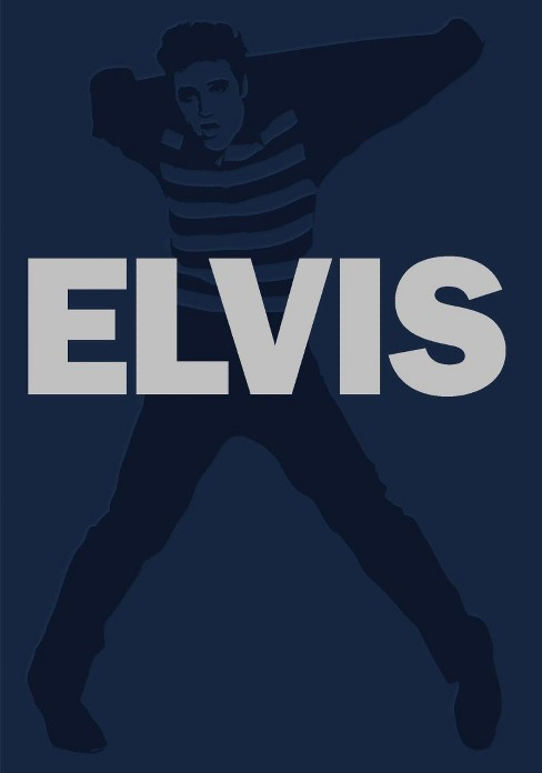 Elvis blue suede collection (DVD) - image 1 of 1