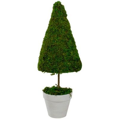 """Northlight 20.5"""" Reindeer Moss Potted Artificial Spring Floral Topiary Tree - Green/White"""