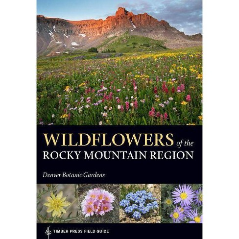Wildflowers of the Rocky Mountain Region - (Timber Press Field Guide) (Paperback) - image 1 of 1