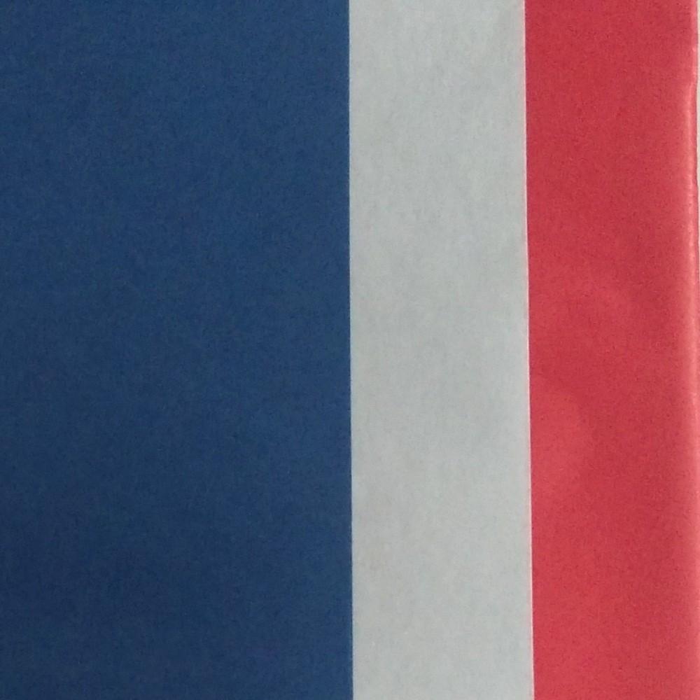 Image of 3 Step Striped Tissue Paper Navy/Red - Spritz
