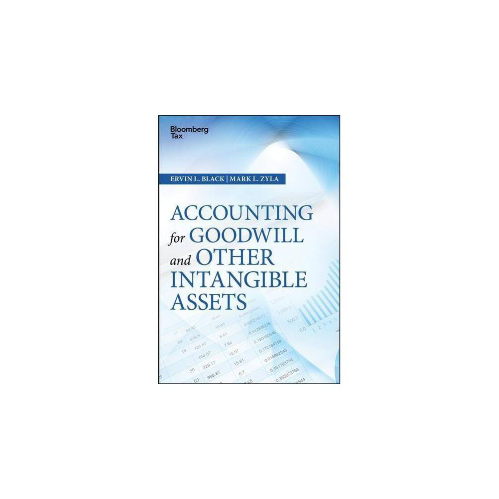 Accounting for Goodwill and Other Intangible Assets - by Ervin L. Black & Mark L. Zyla (Hardcover)