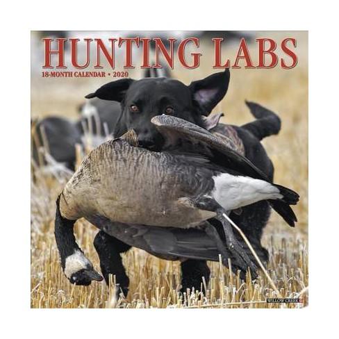 Hunting Calendar 2020 Hunting Labs 2020 Calendar   (Paperback) : Target