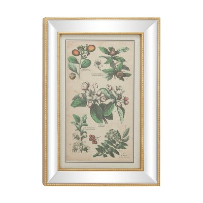 "19.5"" x 28.5"" Large Vintage Style Plant Illustrations Textile in Mirror and Rectangular Frame Gold - Olivia & May"