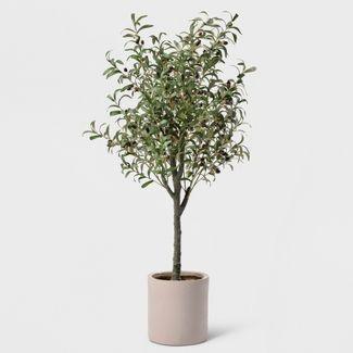 """60"""" Potted Olive Tree - Lloyd & Hannah"""