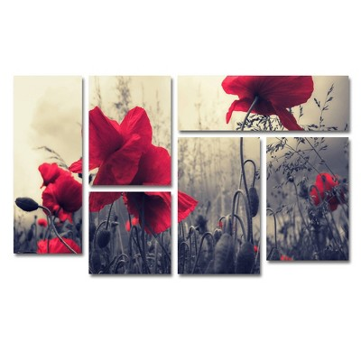 6pc Red For Love by Philippe SainteLaudy - Trademark Fine Art