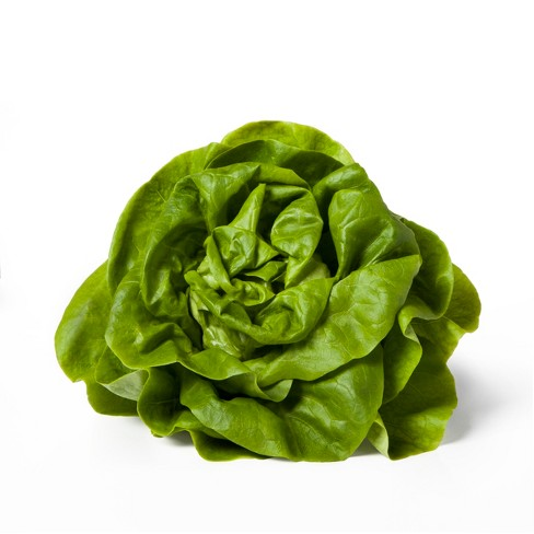 Butter Lettuce Head - Each - image 1 of 2