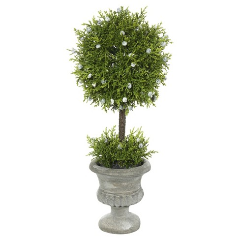 Artificial Oregon Juniper Topiary In Container (15in) Green - Vickerman® - image 1 of 1