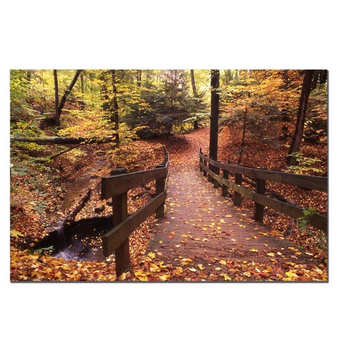 'Autumn Bridge' by Kurt Shaffer Ready to Hang Canvas Wall Art - image 1 of 1