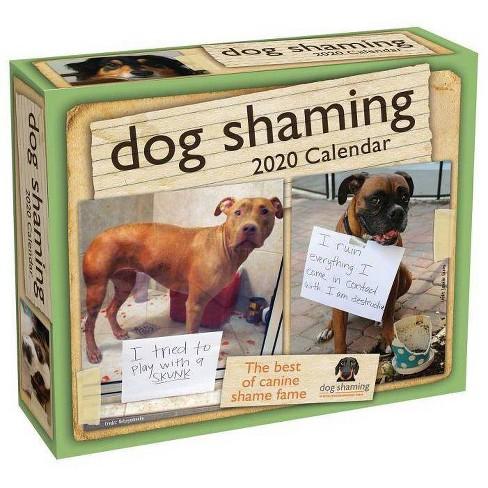 Dog Shaming Calendar 2020 Dog Shaming 2020 Day To Day Calendar   By Pascale Lemire