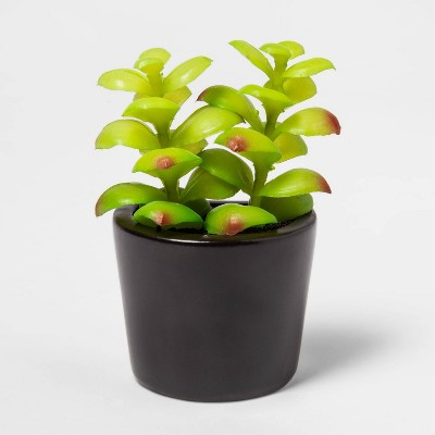 "4"" x 2"" Artificial Succulent in Magnetic Black Pot - Project 62™"