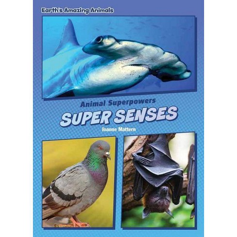 Super Senses - (Core Content Science -- Animal Superpowers) by  Joanne Mattern (Hardcover) - image 1 of 1