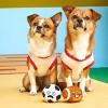 Bark Couple O Footballs Dog Toy - image 2 of 4