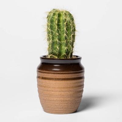 "7.5"" x 2"" Artificial Cactus Arrangement in Ceramic Pot Green/Brown - Threshold™"