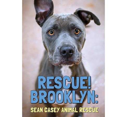 Rescue Brooklyn (DVD) - image 1 of 1