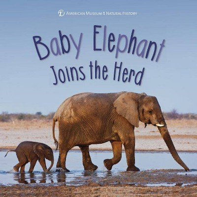 Baby Elephant Joins the Herd - (First Discoveries) (Hardcover)