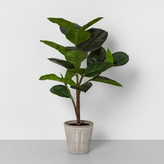 "26"" Faux Rubber Tree Potted Plant - Hearth & Hand™ with Magnolia"