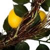 "Artificial Salal Leaf/Lemon Wreath (24"") Yellow - Vickerman - image 4 of 4"