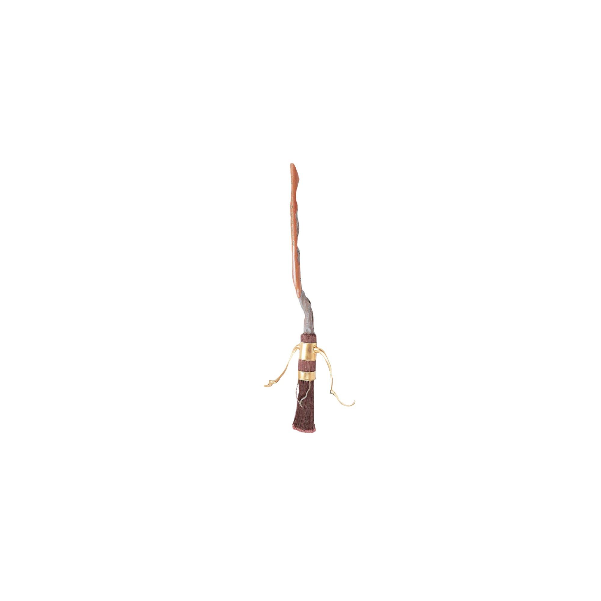 Halloween Harry Potter Standard Broom Costume Accessory, Adult Unisex