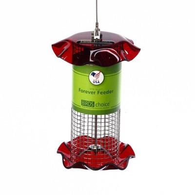 Birds Choice 1qt Forever Black Oil Sunflower Bird Feeder - Red