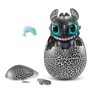 How To Train Your Dragon Hatching Toothless