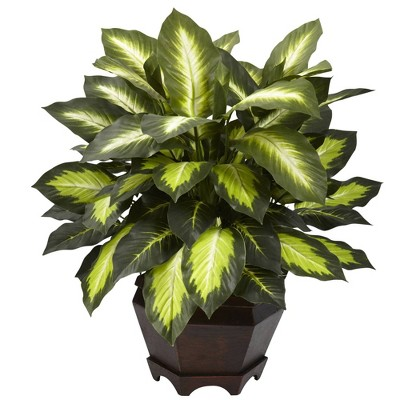 "22"" Artificial Triple Golden Dieffenbachia with Wood Vase - Nearly Natural"
