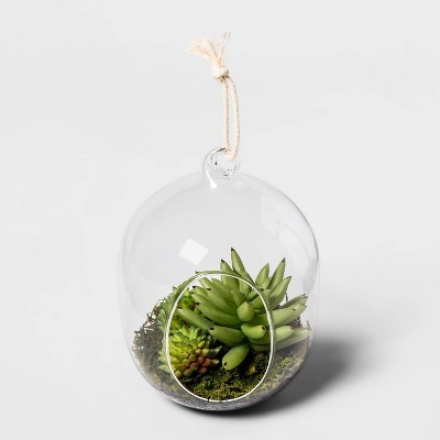 "6"" x 4.2"" Glass Terrarium with Succulents Green/Clear - Threshold™"