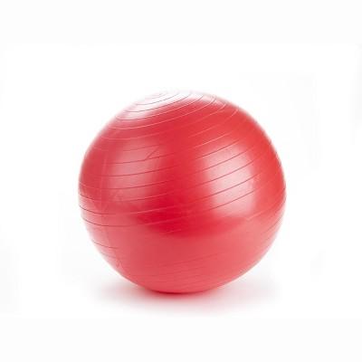 Mind Reader Anti-Burst Heavy Duty Yoga Ball with Quick Pump, 55 CM