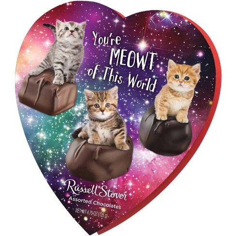 Russell Stover Valentine's Humor Memes Assorted Chocolates Heart - 4.75oz - image 1 of 4