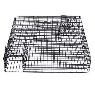 Rugged Ranch CHPTO Chipmunkinator Live Chipmunk Squirrel Rat Mouse Rodent Small Animal Metal Wire 2 Door Trap Cage, Black