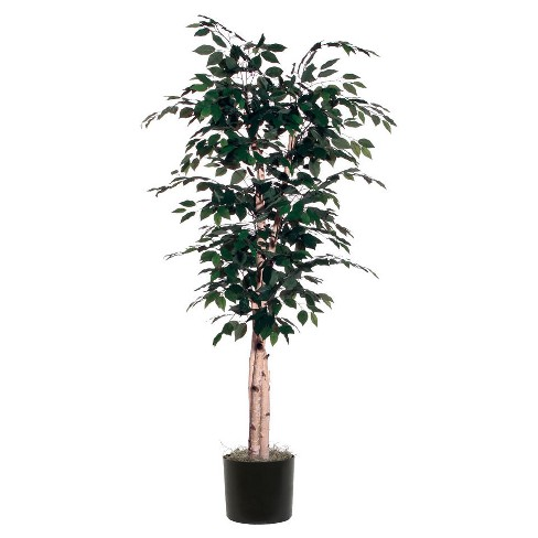 Artificial Birch Plant (6.4ft) Green - Vickerman® - image 1 of 2