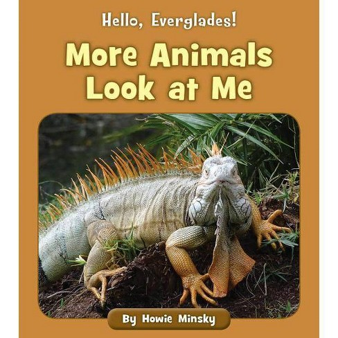 More Animals Look at Me - (Hello, Everglades!) by  Howie Minsky (Paperback) - image 1 of 1