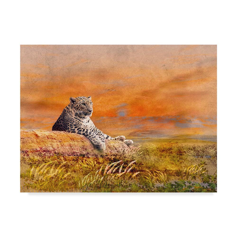 Ata Alishahi The Cat Unframed Wall 18